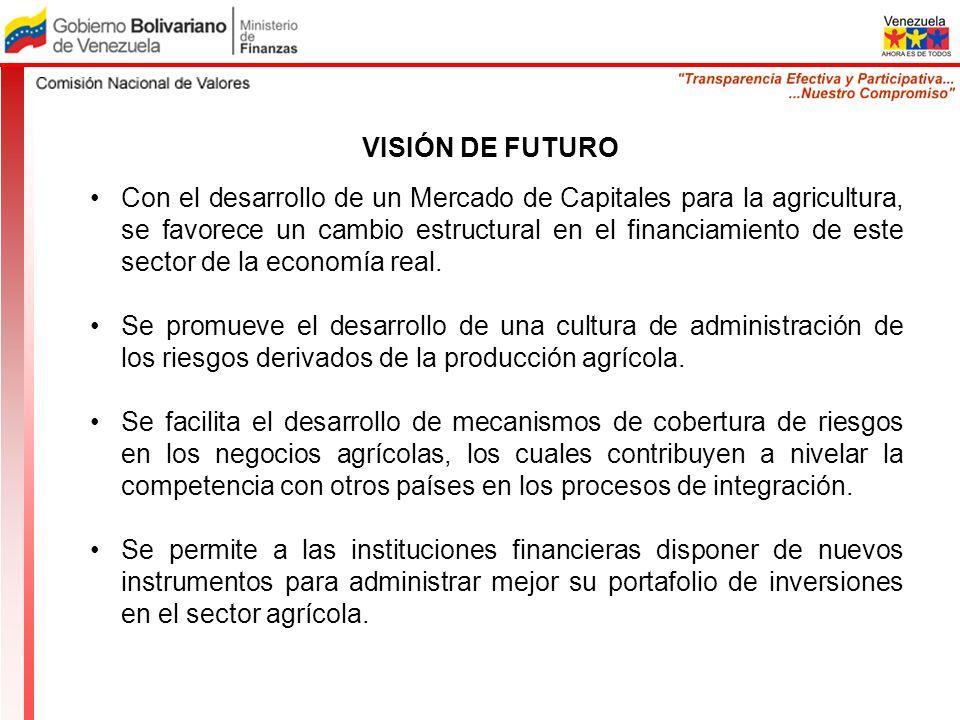 VISIÓN DE FUTURO Con el desarrollo de un Mercado de Capitales para la agricultura, se favorece un cambio estructural en el financiamiento de este sect
