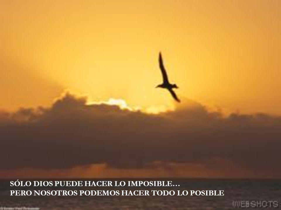SÓLO DIOS PUEDE HACER LO IMPOSIBLE… PERO NOSOTROS PODEMOS HACER TODO LO POSIBLE