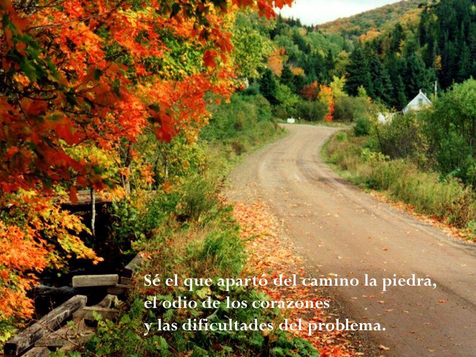 Sé el que apartó del camino la piedra, el odio de los corazones y las dificultades del problema.