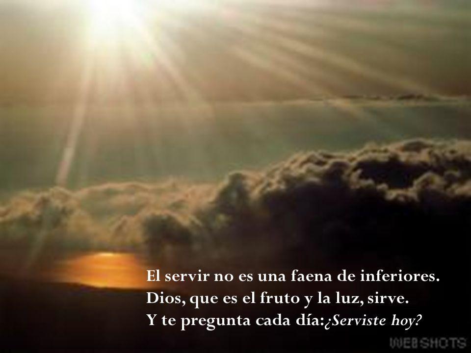 El servir no es una faena de inferiores. Dios, que es el fruto y la luz, sirve. Y te pregunta cada día:¿Serviste hoy?
