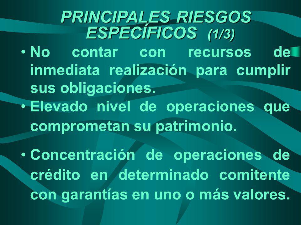 PRINCIPALES RIESGOS ESPECÍFICOS (1/3) No contar con recursos de inmediata realización para cumplir sus obligaciones. Elevado nivel de operaciones que