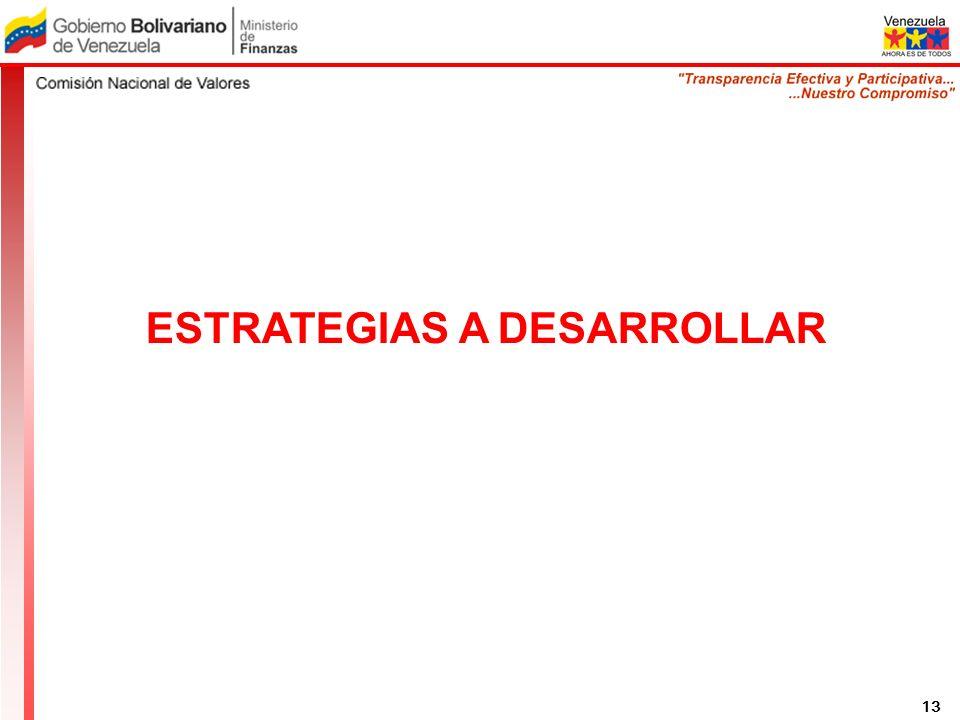 ESTRATEGIAS A DESARROLLAR 13