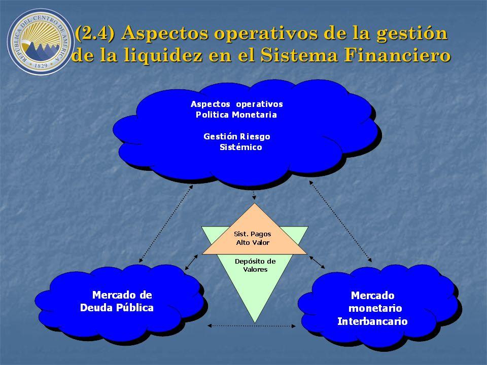 (2.3) Beneficios A.Reducir el costo financiero de la deuda pública: mayores costos de emisión en euromercados y de otras fuentes externas y alto riesg