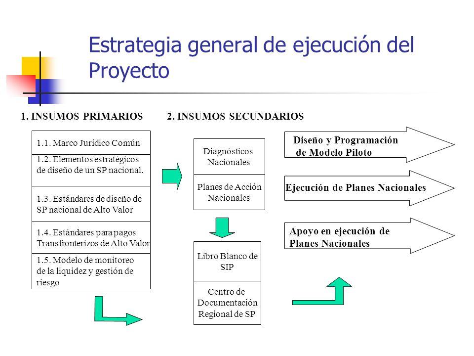 Estrategia general de ejecución del Proyecto 2. INSUMOS SECUNDARIOS1. INSUMOS PRIMARIOS Diseño y Programación de Modelo Piloto Ejecución de Planes Nac