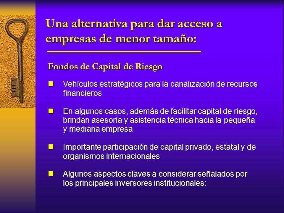 nVehículos estratégicos para la canalización de recursos financieros nEn algunos casos, además de facilitar capital de riesgo, brindan asesoría y asis