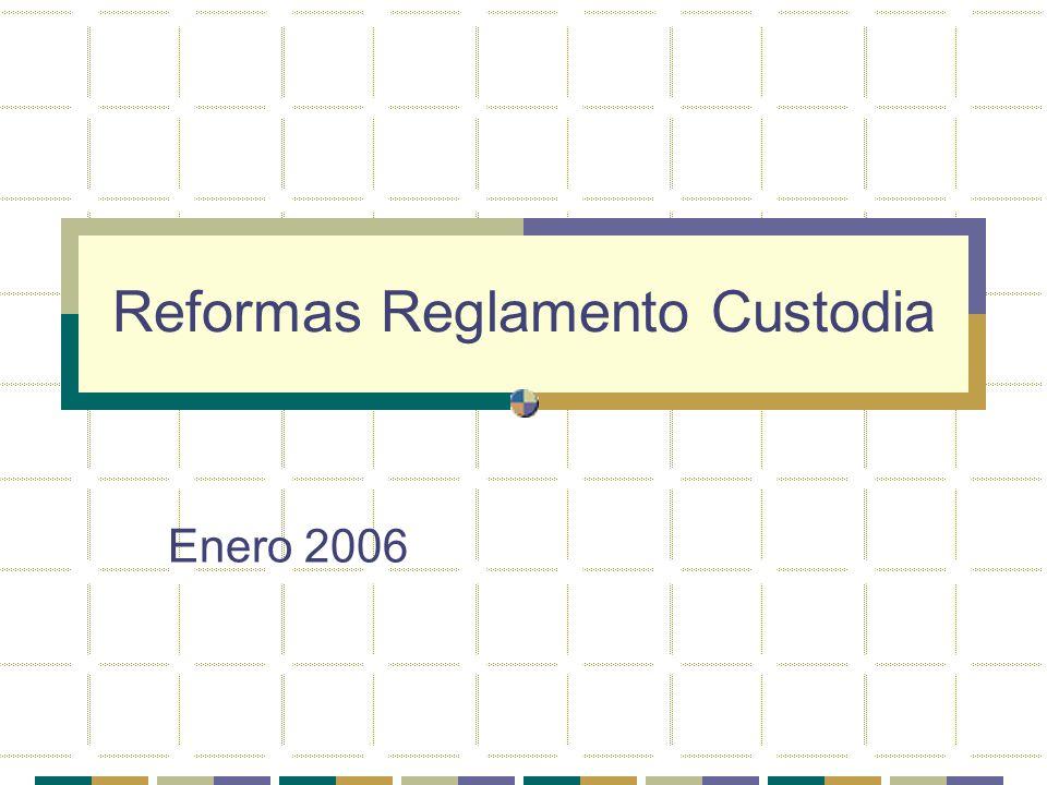 Reformas Reglamento Custodia Enero 2006