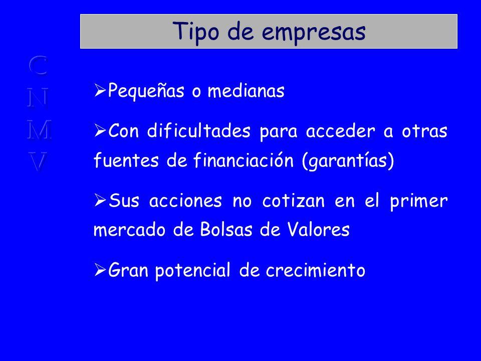 Fuente: El Capital Inversión en España. José Martí Pellón. Civitas Capital gestionado (1990-2000)