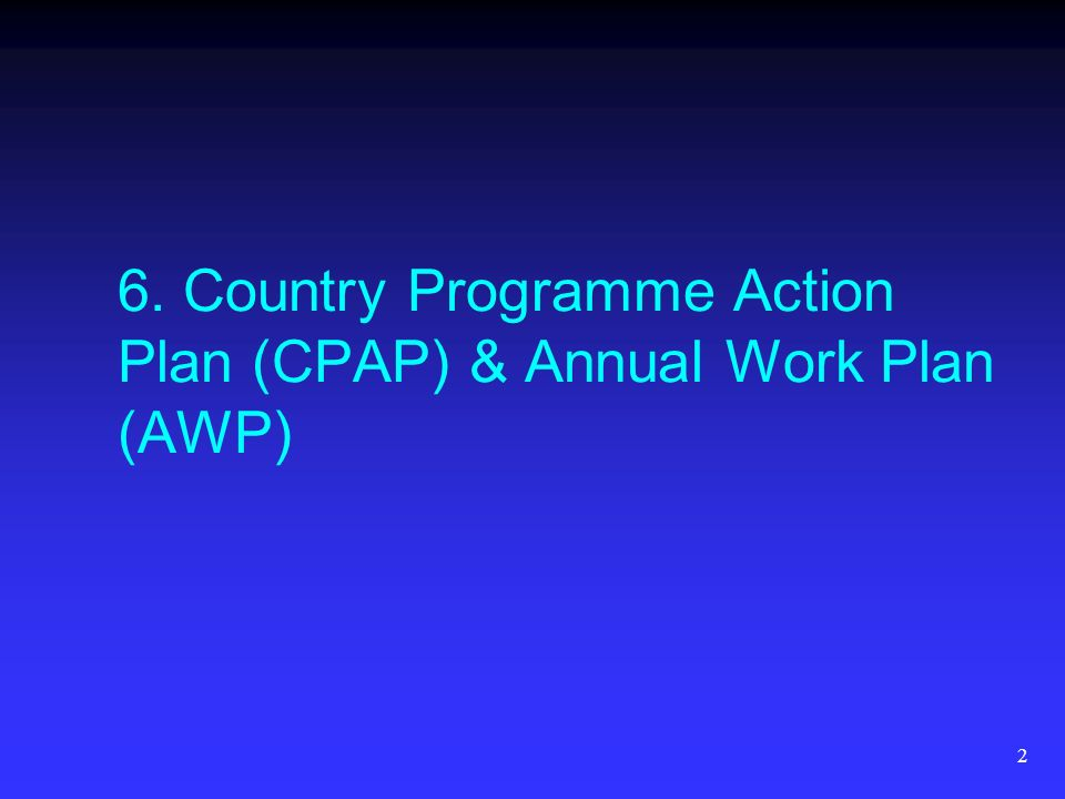 2 6. Country Programme Action Plan (CPAP) & Annual Work Plan (AWP)