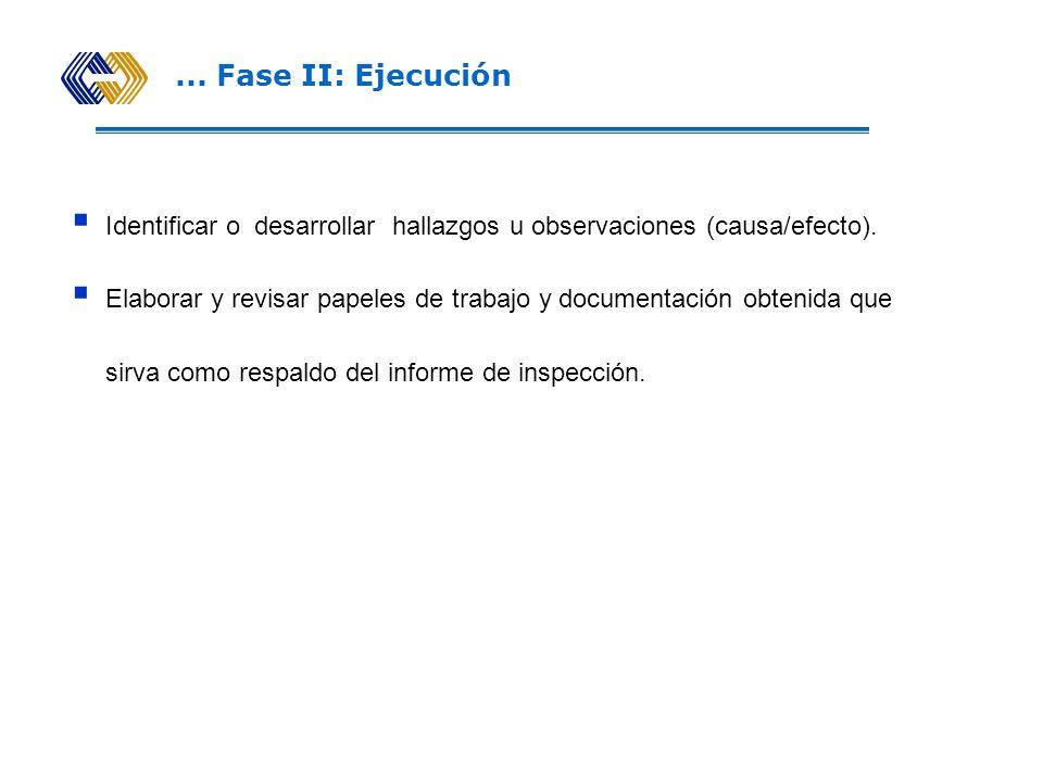 PROCESO DE LA VISITA DE INSPECCIÓN Fase II: Ejecución Concepto Comprende el proceso de ejecutar, en las propias instalaciones del Intermediario, el pl