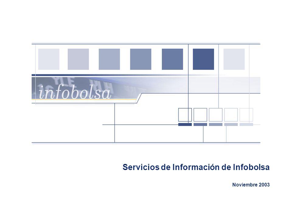 12 Servicios de Terminales: Infobolsa NetStation InfoBolsa NetStation es un servicio de difusión de información económico- financiera en Tiempo Real que utiliza las infraestructuras de Internet o las propias de Intranet de la entidad para hacer llegar la información al usuario.