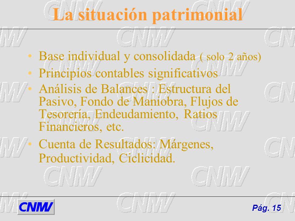 La situación patrimonial Base individual y consolidada ( solo 2 años) Principios contables significativos Análisis de Balances : Estructura del Pasivo