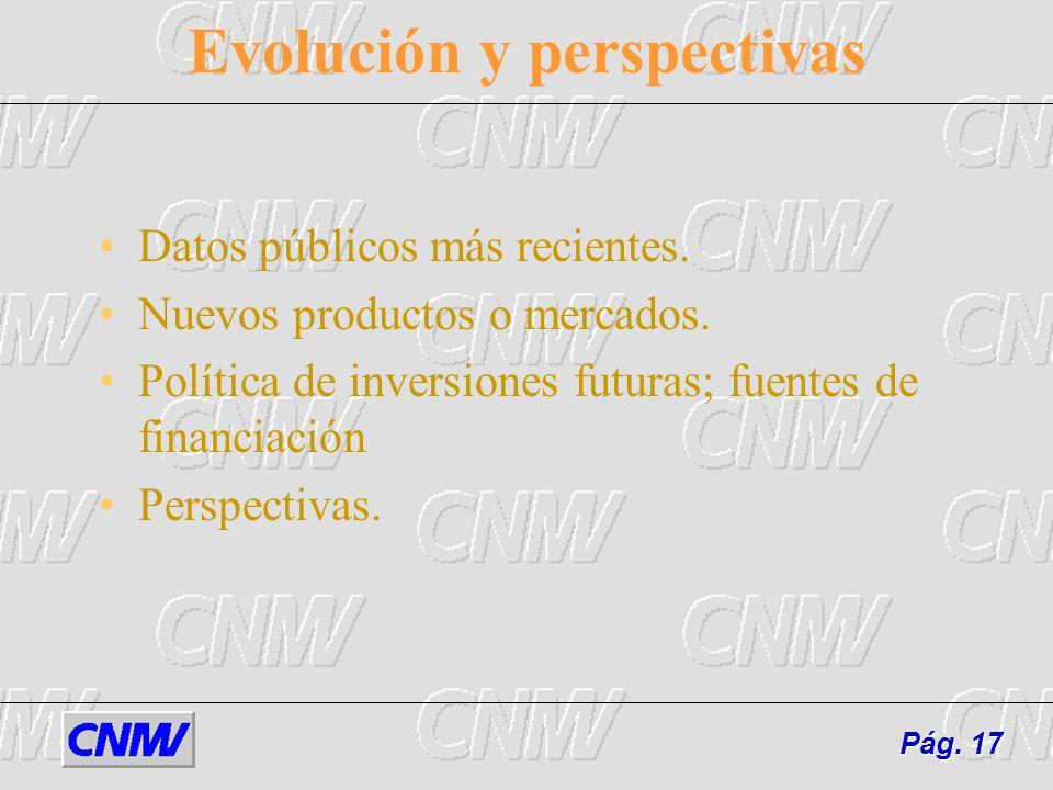 Evolución y perspectivas Datos públicos más recientes. Nuevos productos o mercados. Política de inversiones futuras; fuentes de financiación Perspecti