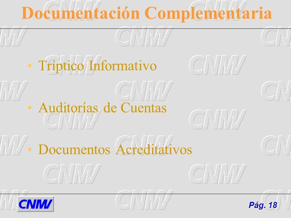 Documentación Complementaria Tríptico Informativo Auditorías de Cuentas Documentos Acreditativos Pág. 18