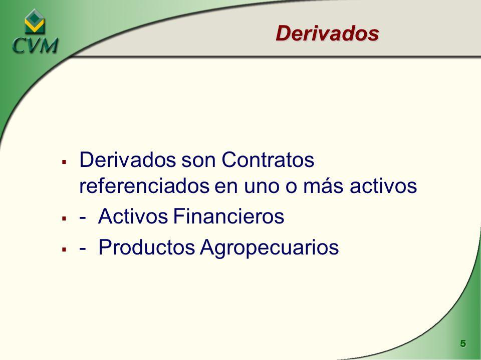 16 Productos Agropecuarios negociados en la BM&F Azúcar, Alcohol, Algodón, Becerro, Buey Gordo, Café, Maíz y Soja Todos negociados por contratos futuros y opciones de compra y venta