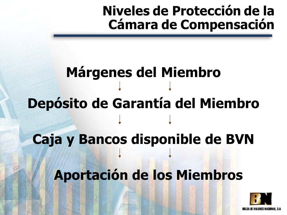 Niveles de Protección de la Cámara de Compensación Márgenes del Miembro Depósito de Garantía del Miembro Aportación de los Miembros Caja y Bancos disp