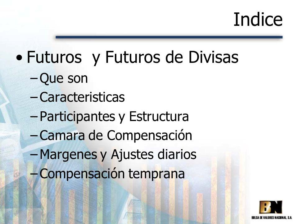 Indice Futuros y Futuros de Divisas –Que son –Caracteristicas –Participantes y Estructura –Camara de Compensación –Margenes y Ajustes diarios –Compens