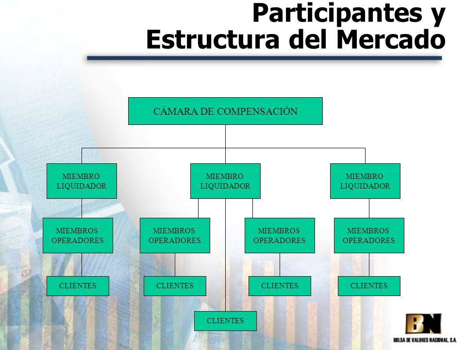 Participantes y Estructura del Mercado CÁMARA DE COMPENSACIÓN MIEMBRO LIQUIDADOR MIEMBRO LIQUIDADOR MIEMBRO LIQUIDADOR MIEMBROS OPERADORES MIEMBROS OP
