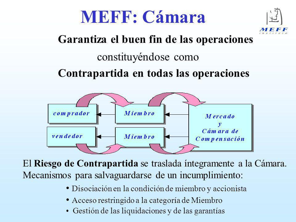 MIEMBROS DE MEFF: Requisitos (capt.