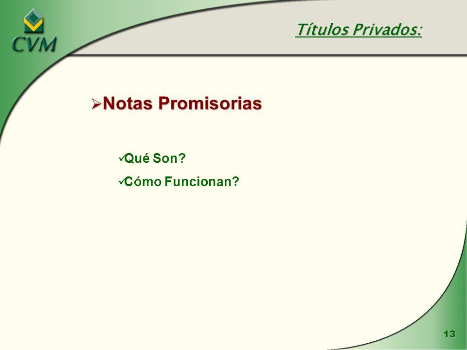 13 Notas Promisorias Notas Promisorias Qué Son? Cómo Funcionan? Títulos Privados: