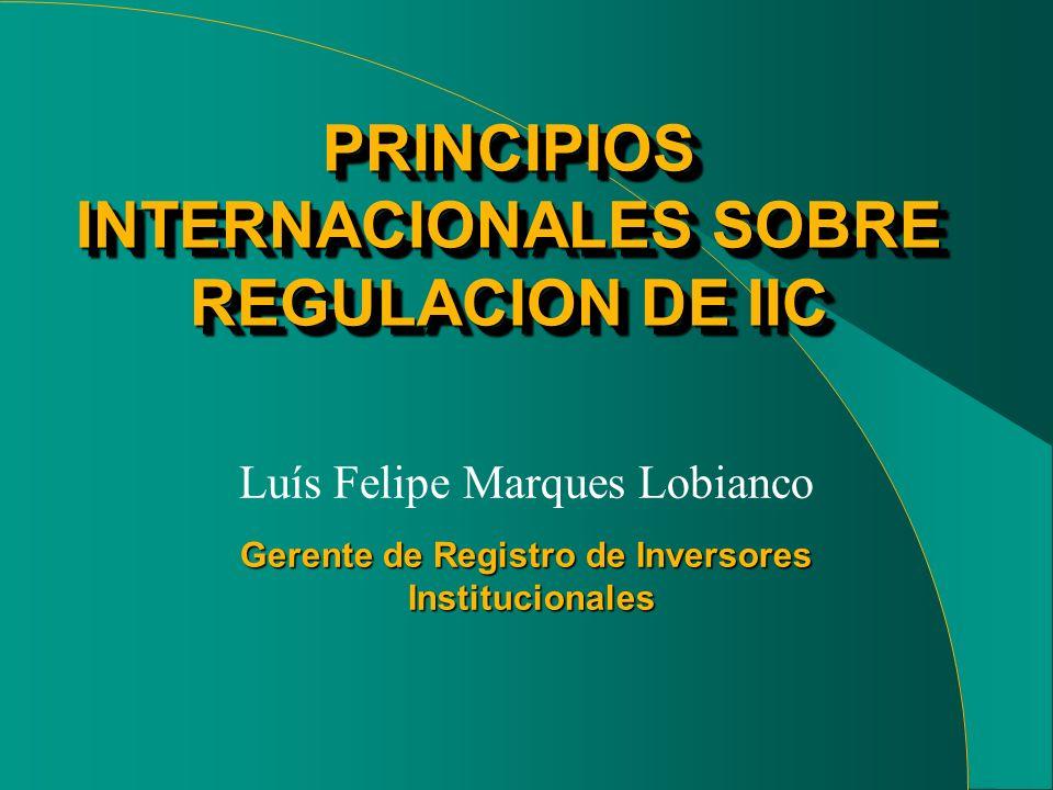 Gerente de Registro de Inversores Institucionales Luís Felipe Marques Lobianco PRINCIPIOS INTERNACIONALES SOBRE REGULACION DE IIC PRINCIPIOS