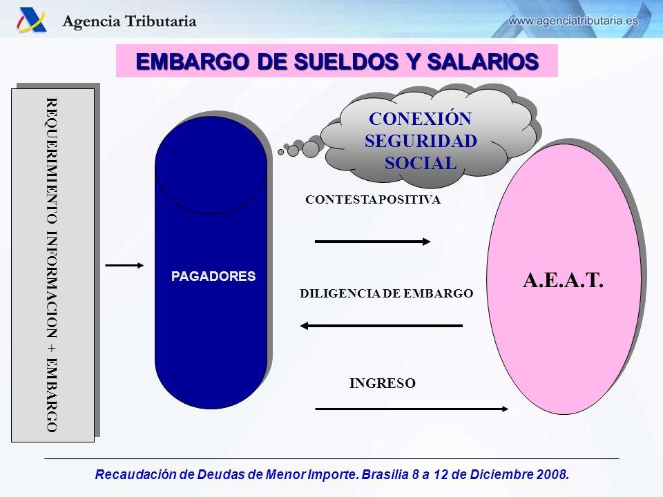 Recaudación de Deudas de Menor Importe. Brasilia 8 a 12 de Diciembre 2008. EMBARGO DE SUELDOS Y SALARIOS PAGADORES CONTESTA POSITIVA A.E.A.T. DILIGENC