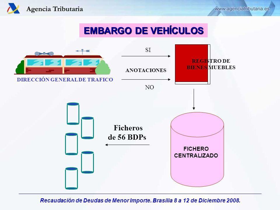 Recaudación de Deudas de Menor Importe. Brasilia 8 a 12 de Diciembre 2008. DIRECCIÓN GENERAL DE TRAFICO ANOTACIONES REGISTRO DE BIENES MUEBLES FICHERO