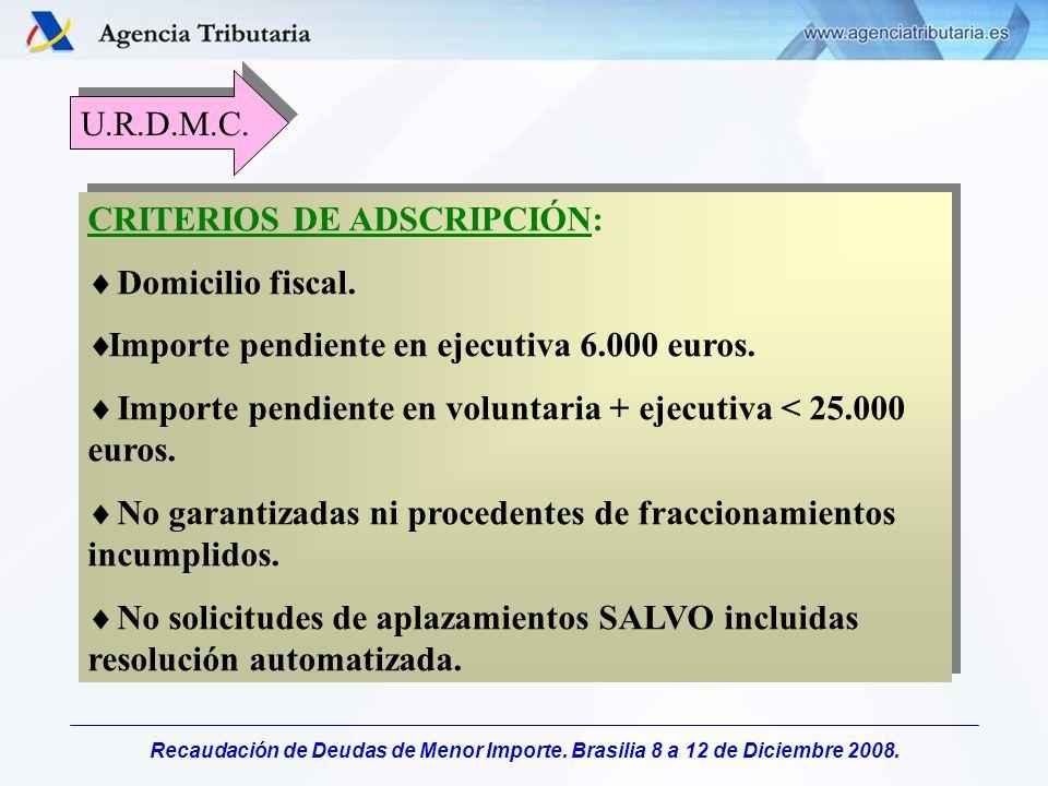 Recaudación de Deudas de Menor Importe. Brasilia 8 a 12 de Diciembre 2008. CRITERIOS DE ADSCRIPCIÓN: Domicilio fiscal. Importe pendiente en ejecutiva