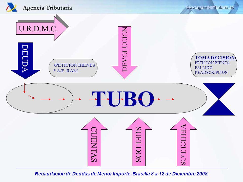 Recaudación de Deudas de Menor Importe. Brasilia 8 a 12 de Diciembre 2008. U.R.D.M.C. TUBO DEUDA CUENTAS SUELDOS VEHICULOS TOMA DECISION: PETICION BIE