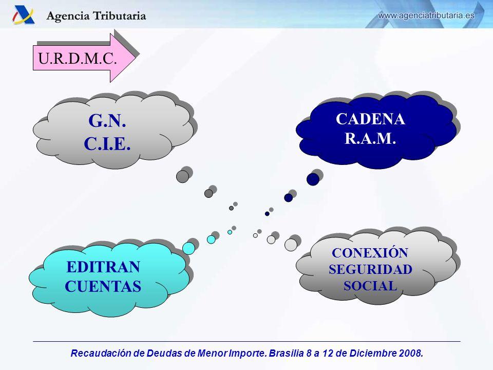 Recaudación de Deudas de Menor Importe. Brasilia 8 a 12 de Diciembre 2008. U.R.D.M.C. G.N. C.I.E. G.N. C.I.E. CADENA R.A.M. EDITRAN CUENTAS CONEXIÓN S