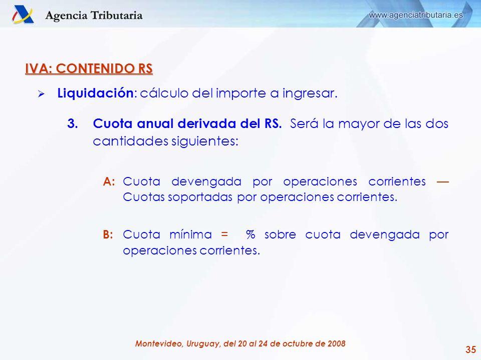 35 Montevideo, Uruguay, del 20 al 24 de octubre de 2008 IVA: CONTENIDO RS Liquidación : cálculo del importe a ingresar. 3.Cuota anual derivada del RS.