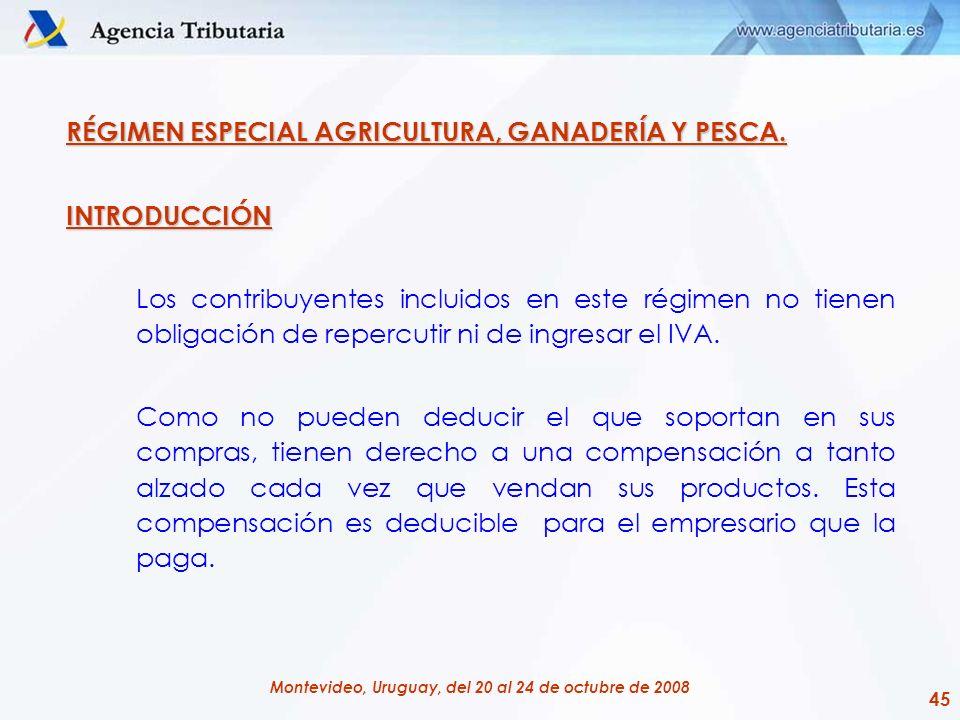 45 Montevideo, Uruguay, del 20 al 24 de octubre de 2008 RÉGIMEN ESPECIAL AGRICULTURA, GANADERÍA Y PESCA. INTRODUCCIÓN Los contribuyentes incluidos en
