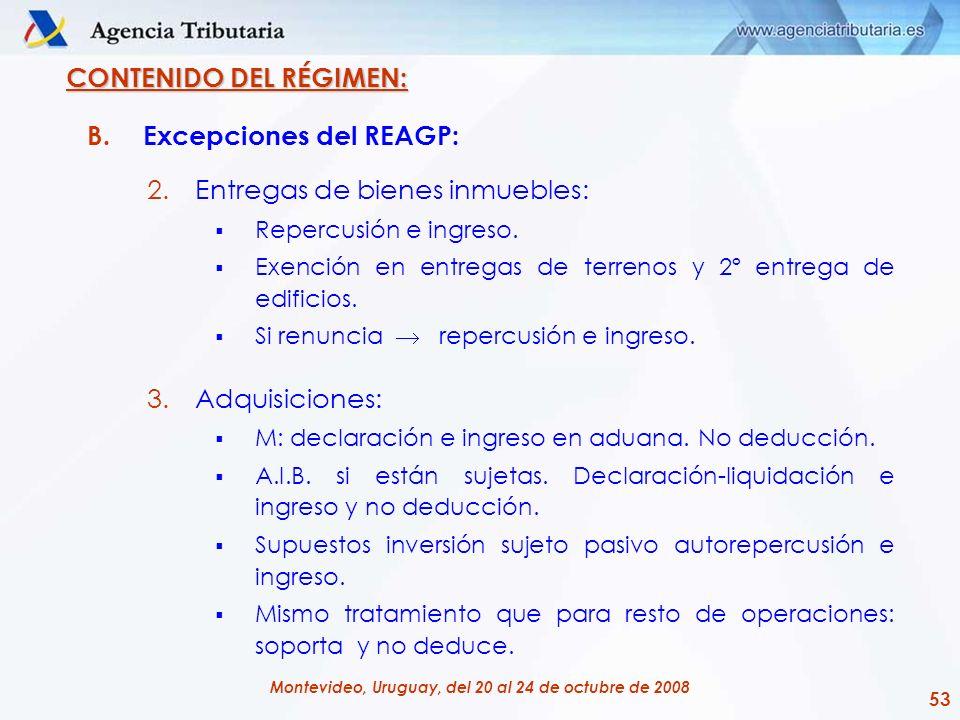 53 Montevideo, Uruguay, del 20 al 24 de octubre de 2008 CONTENIDO DEL RÉGIMEN: B.Excepciones del REAGP: 2.Entregas de bienes inmuebles: Repercusión e