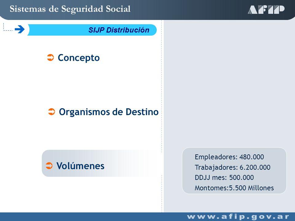 Empleadores: 480.000 Trabajadores: 6.200.000 DDJJ mes: 500.000 Montomes:5.500 Millones Concepto Organismos de Destino Volúmenes Sistemas de Seguridad Social C SIJP Distribución