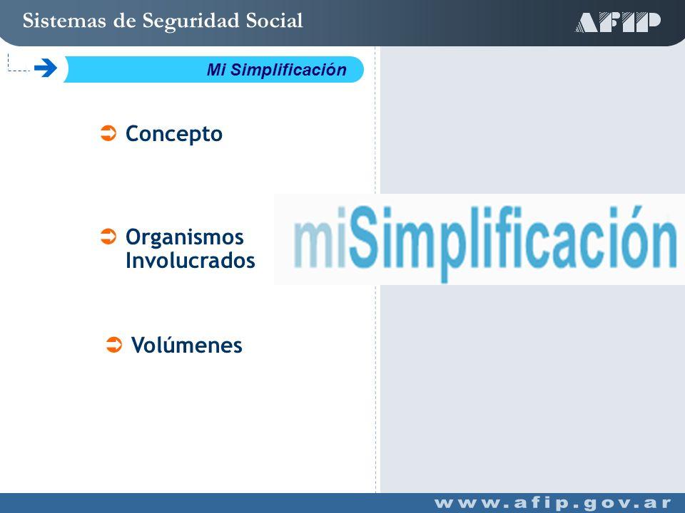 Concepto Organismos Involucrados Volúmenes Sistemas de Seguridad Social C Mi Simplificación