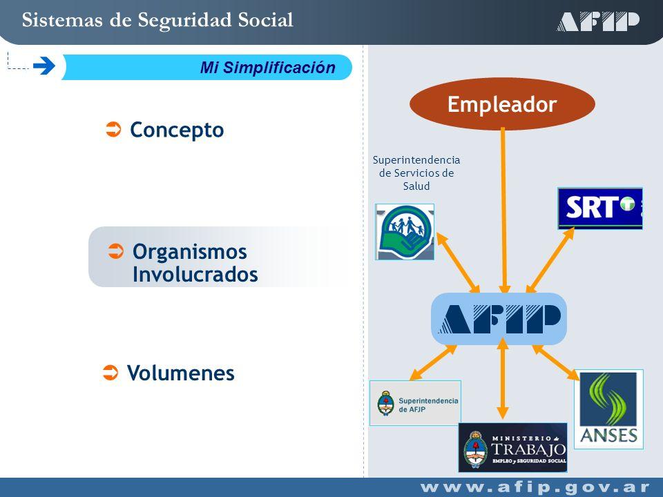 Concepto Organismos Involucrados Volumenes Sistemas de Seguridad Social C Mi Simplificación Empleador Superintendencia de Servicios de Salud