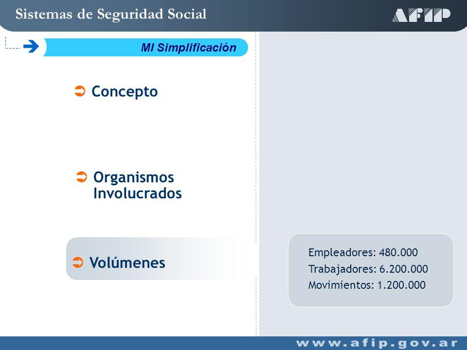 Empleadores: 480.000 Trabajadores: 6.200.000 Movimientos: 1.200.000 Concepto Organismos Involucrados Volúmenes Sistemas de Seguridad Social C MI Simplificación