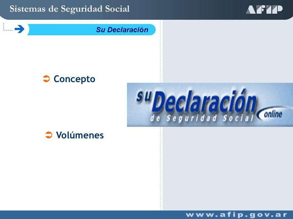Concepto Volúmenes Sistemas de Seguridad Social C Su Declaración