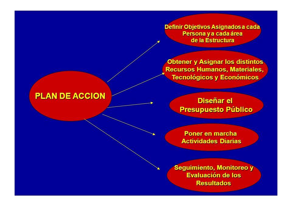PLAN DE ACCION Definir Objetivos Asignados a cada Persona y a cada área de la Estructura Diseñar el Presupuesto Público Obtener y Asignar los distinto