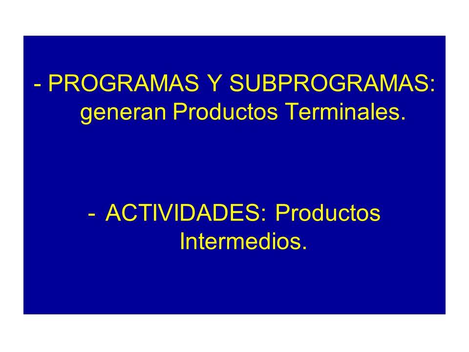- PROGRAMAS Y SUBPROGRAMAS: generan Productos Terminales. -ACTIVIDADES: Productos Intermedios.