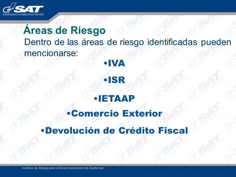 Análisis de Riesgo para el Direccionamiento de Auditorias Áreas de Riesgo Dentro de las áreas de riesgo identificadas pueden mencionarse: Comercio Ext