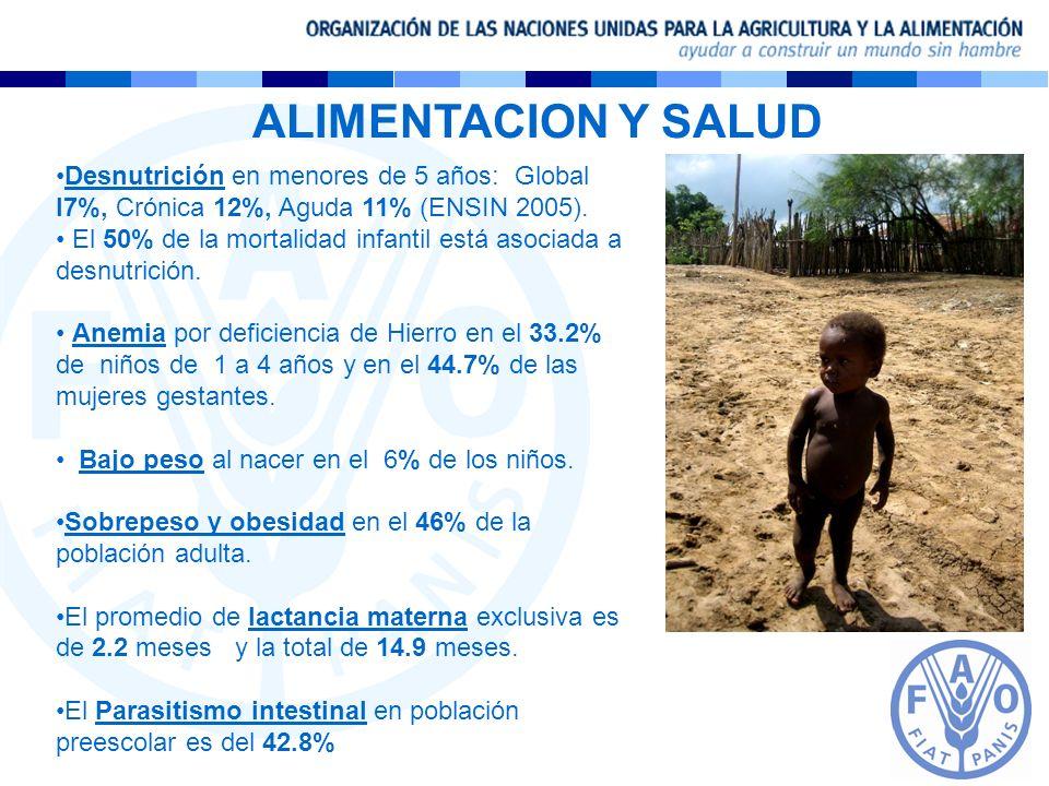 Desnutrición en menores de 5 años: Global l7%, Crónica 12%, Aguda 11% (ENSIN 2005). El 50% de la mortalidad infantil está asociada a desnutrición. Ane