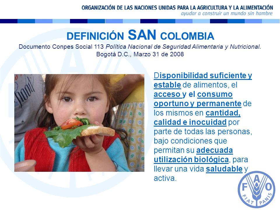 DEFINICIÓN SAN COLOMBIA Documento Conpes Social 113 Política Nacional de Seguridad Alimentaria y Nutricional. Bogotá D.C., Marzo 31 de 2008 Disponibil