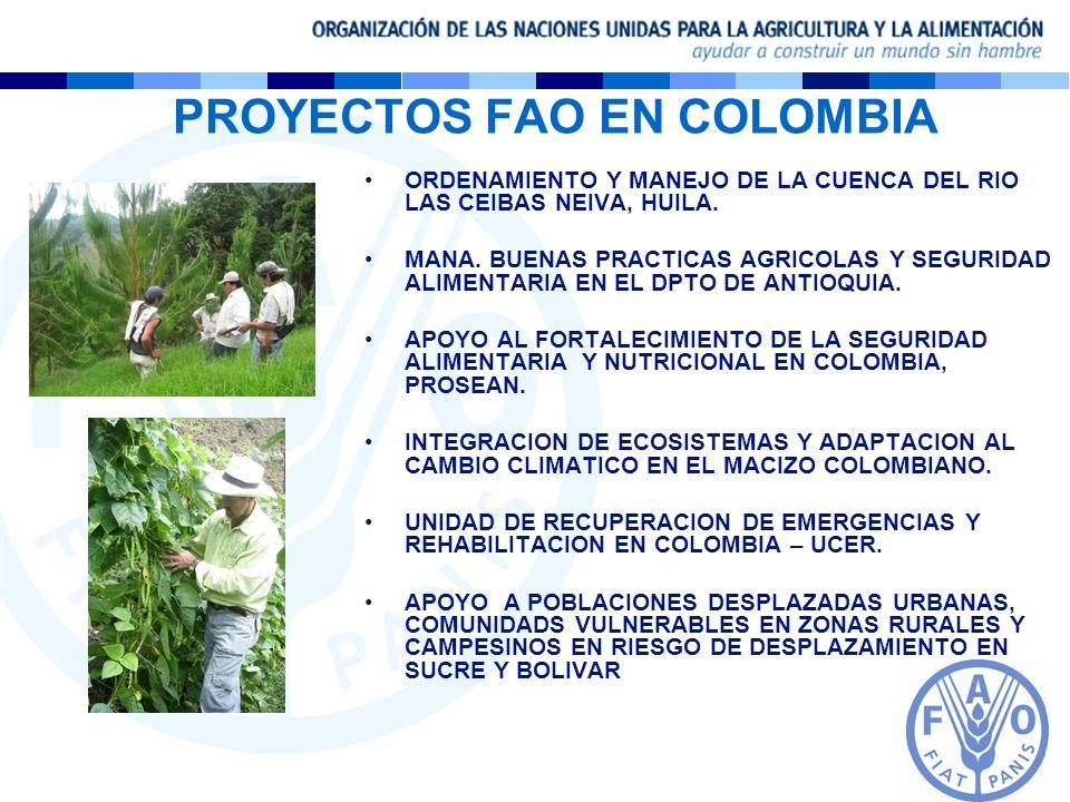 PROYECTOS FAO EN COLOMBIA ORDENAMIENTO Y MANEJO DE LA CUENCA DEL RIO LAS CEIBAS NEIVA, HUILA. MANA. BUENAS PRACTICAS AGRICOLAS Y SEGURIDAD ALIMENTARIA