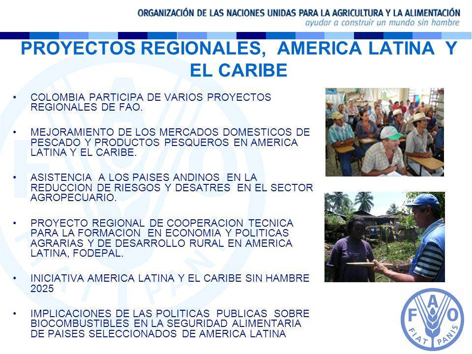 PROYECTOS REGIONALES, AMERICA LATINA Y EL CARIBE COLOMBIA PARTICIPA DE VARIOS PROYECTOS REGIONALES DE FAO. MEJORAMIENTO DE LOS MERCADOS DOMESTICOS DE