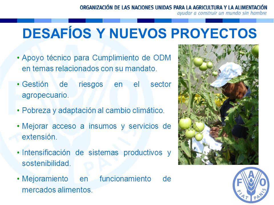 DESAFÍOS Y NUEVOS PROYECTOS Apoyo técnico para Cumplimiento de ODM en temas relacionados con su mandato. Gestión de riesgos en el sector agropecuario.
