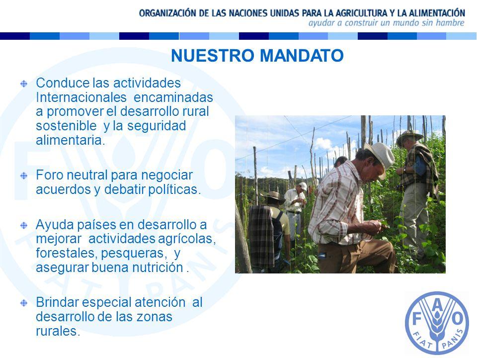 NUESTRO MANDATO Conduce las actividades Internacionales encaminadas a promover el desarrollo rural sostenible y la seguridad alimentaria. Foro neutral