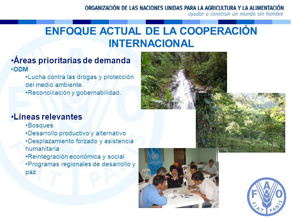 ENFOQUE ACTUAL DE LA COOPERACIÓN INTERNACIONAL Áreas prioritarias de demanda ODM Lucha contra las drogas y protección del medio ambiente. Reconciliaci