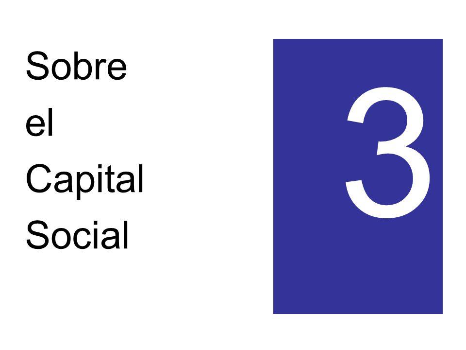 Sobre el Capital Social 3