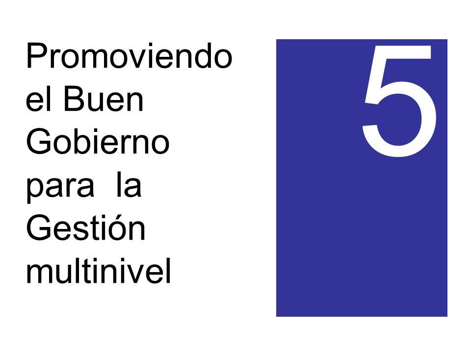 Promoviendo el Buen Gobierno para la Gestión multinivel 5