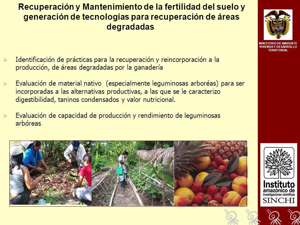 Recuperación y Mantenimiento de la fertilidad del suelo y generación de tecnologías para recuperación de áreas degradadas.